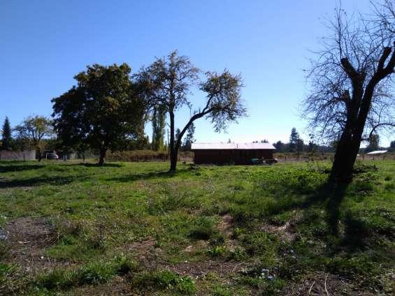 Parcela con cabaña de 70 mts2. arboles y estero
