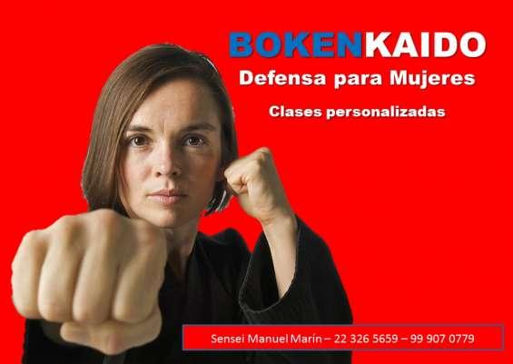 Curso de defensa personal con boxeo karate aikido