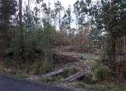 Vendo parcelas media hectarea en pitrufquen