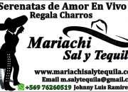 Show de primer nivel mariachi sal y tequila