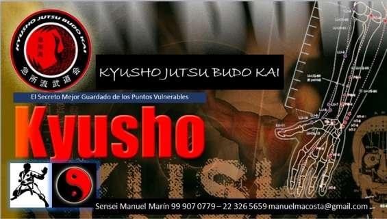 Kyusho jutsu el secreto de las artes marciales