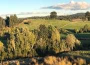 Venta de campo 68,19 hectareas Palomar