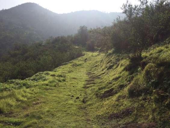 Fotos de 50 hectareas  aurora curacavi, cercana santiago, areas protegidas 2