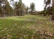 Venta Amplio Terreno, Sector El Totoral, V Región