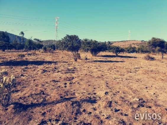 Puchuncavy terrenos en venta