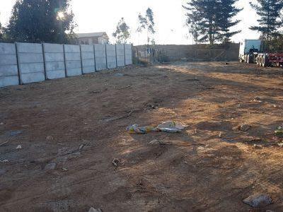 Limpieza de parcelas/terrenos