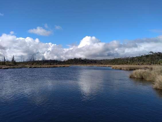 Terreno con orilla, isla de chiloé 40 hectareas