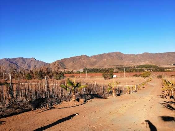Hermosas parcelas en el sector de marqueza, valle del elqui. $39 millones