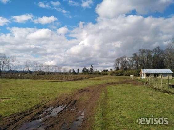 Terrenos en labranza de 1000 metros cuadrados
