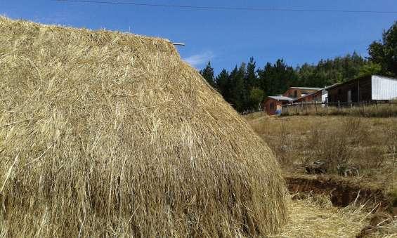 Arriendo casa con ruka en la novena región de la araucanía