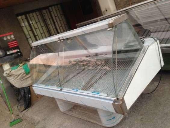Vendo vitrina cupula carnicera, timer frigo